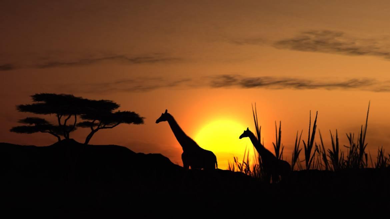 afrikanische-diät.jpg